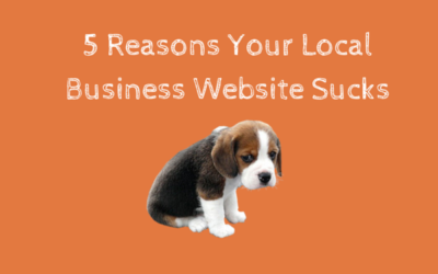 5 Reasons Your Local Business Website Sucks Really Bad